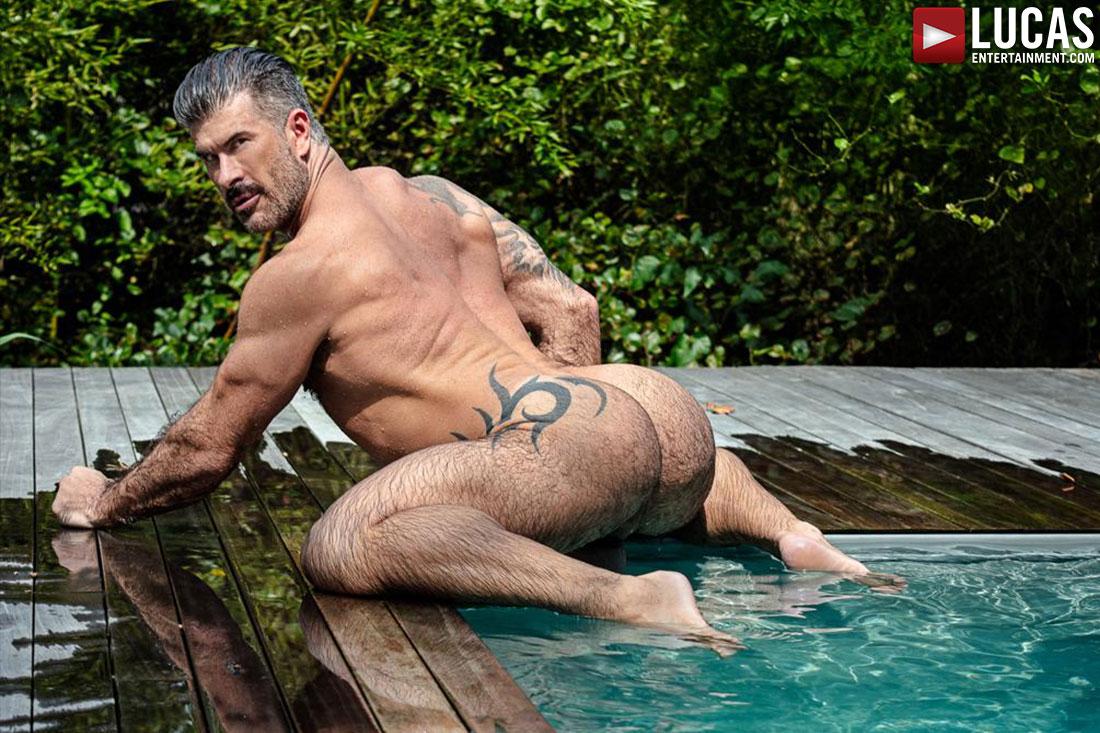 Allen King Gay Porn Bear wrap up on fire island | lucas men | lucas entertainment